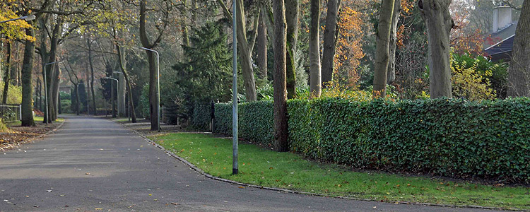 Omgeving - De Parken, Hilversum